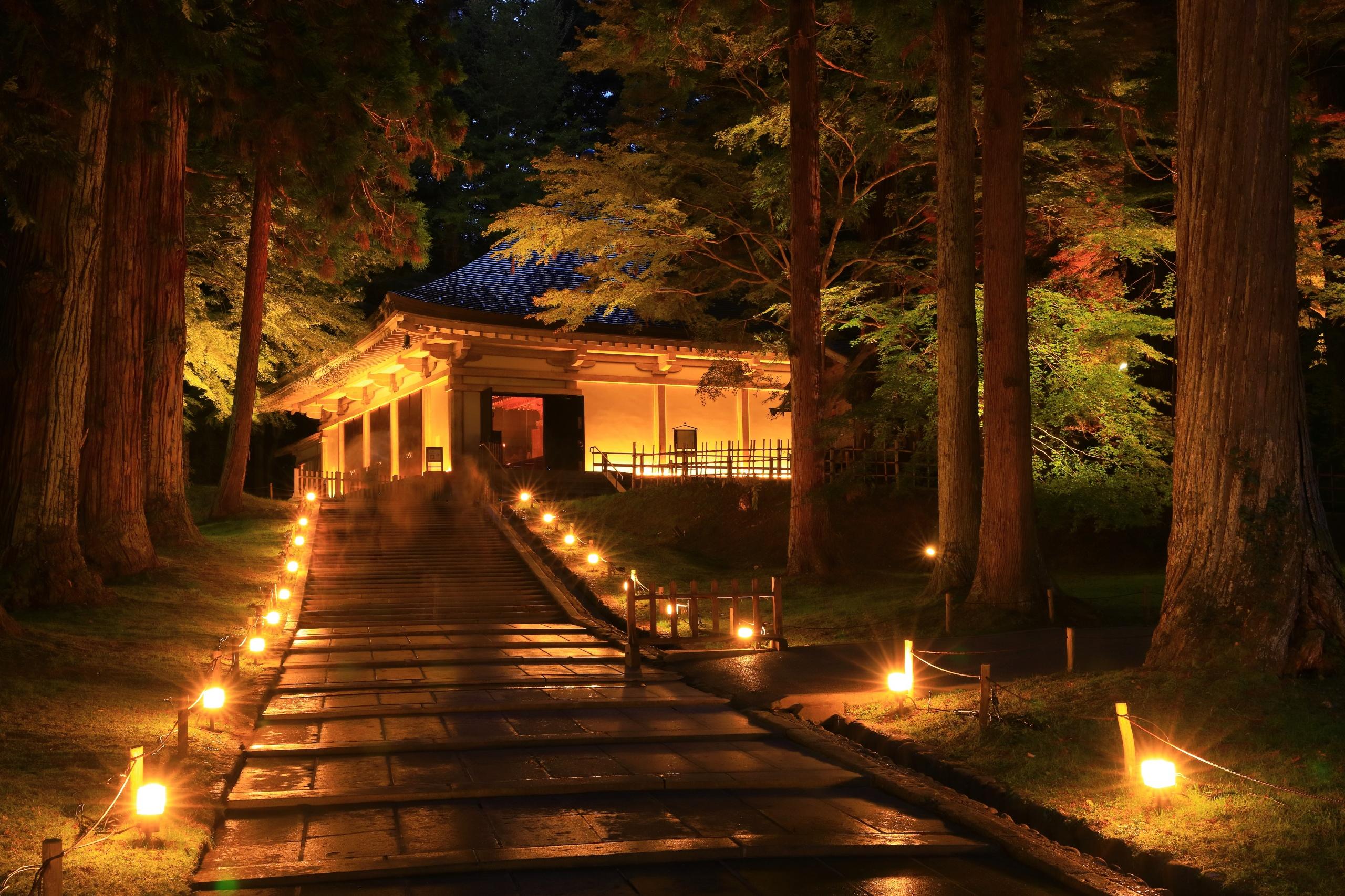 世界遺産 中尊寺 紅葉のライトアップ