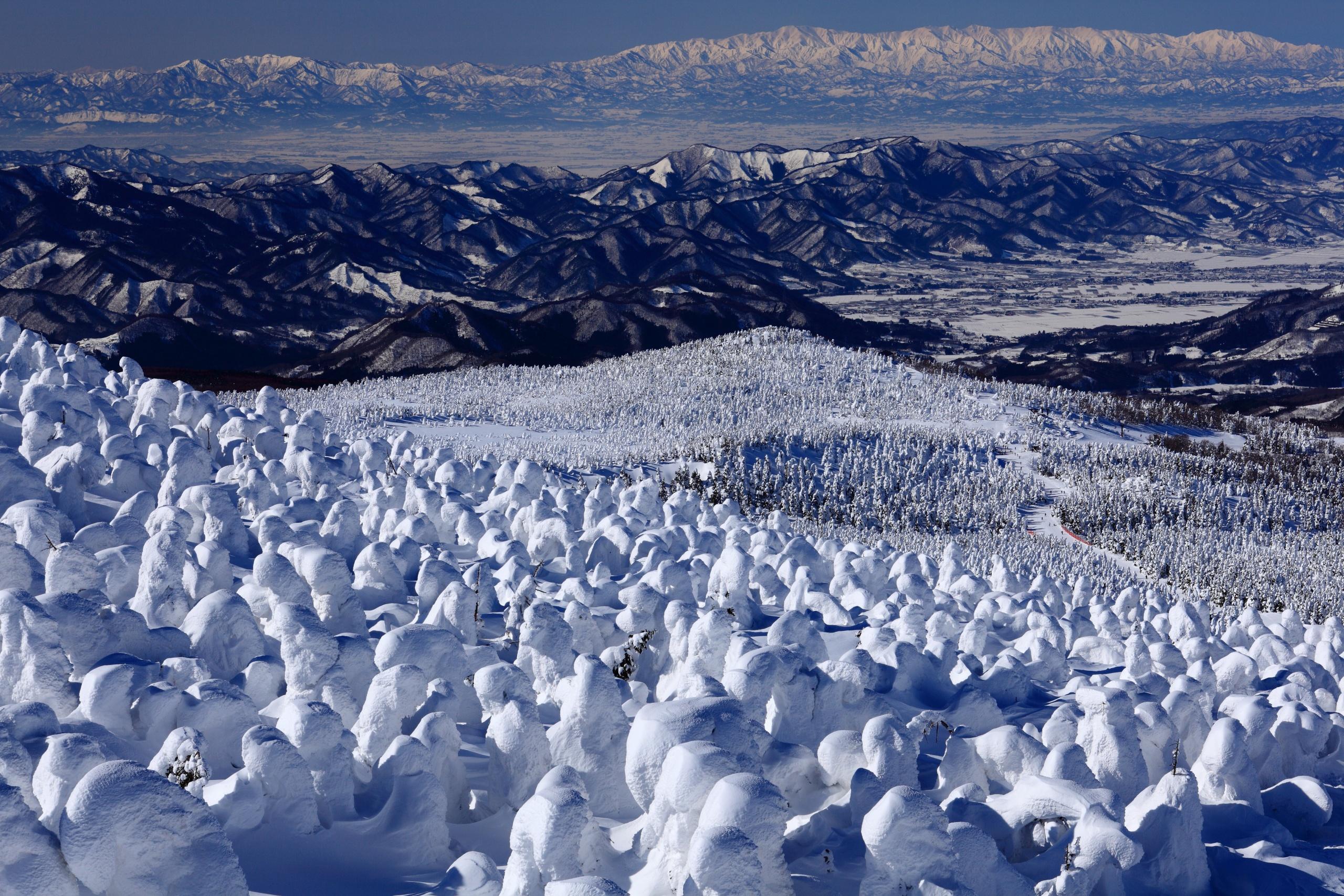 蔵王の樹氷原と飯豊連峰